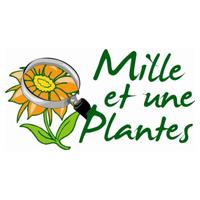 Mille et une plantes